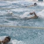 gare-di-nuoto-57