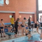 gare di nuoto 2017 007