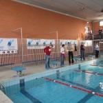 gare di nuoto 2017 013