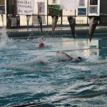 gare di nuoto 2017 043