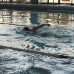 gare di nuoto 2017 044