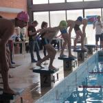 gare di nuoto 2017 049