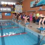 gare di nuoto 2017 052