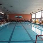 gare di nuoto 2017 053