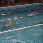 gare nuoto 2015 016.JPG