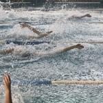 gare nuoto 2015 043.JPG