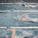 gare nuoto 2015 057.JPG