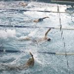 gare nuoto 2015 065.JPG