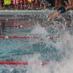gare nuoto 2016 003